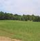 77 Acres vacant land with Tillable